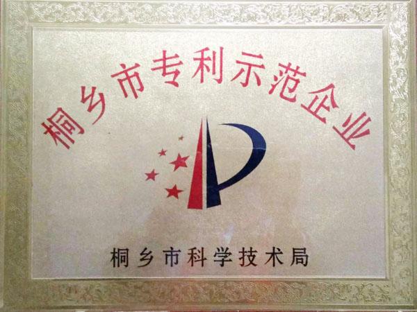 桐乡市专利示范企业